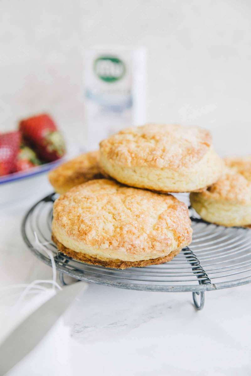 Baked scones for Scones with strawberries and cream